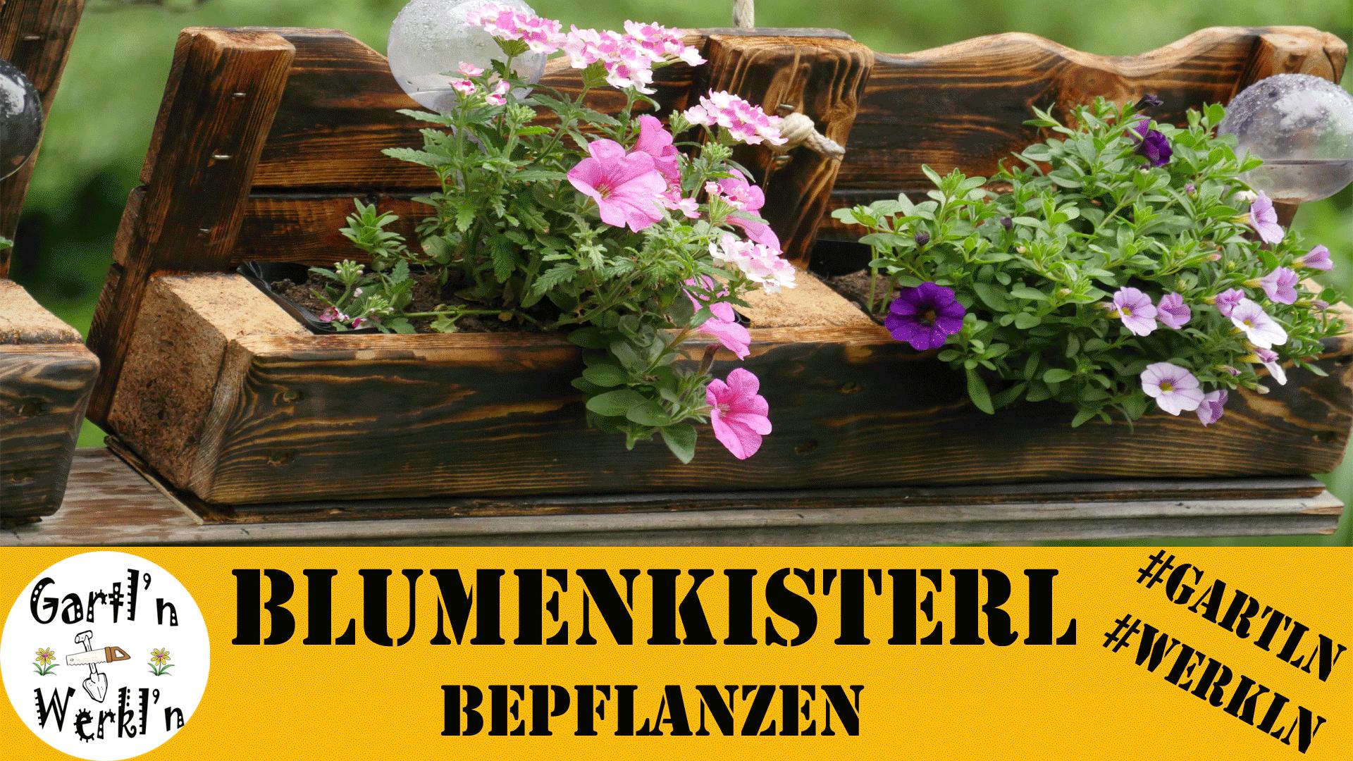 Wir bepflanzen unsere Blumenkisterl aus Paletten